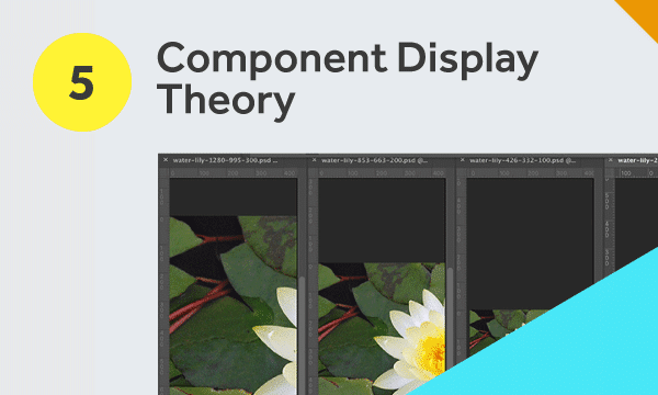 Component Display Theory photography example